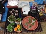 石川祭開催の案内HP小 2.jpg